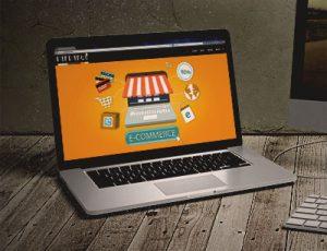 ecommerce-300x230